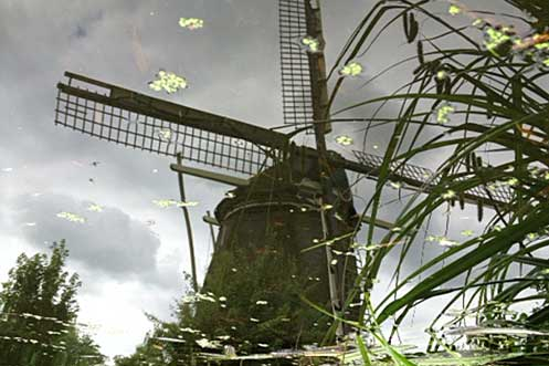 Spotting our first Dutch windmill
