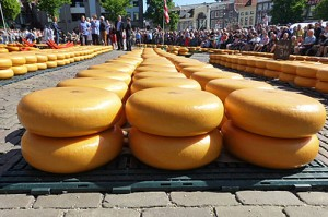 Alkmaar cheese market in Holland